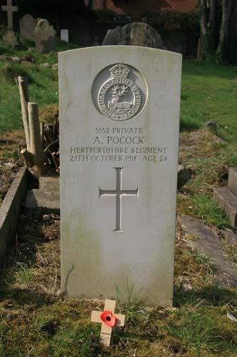 war grave of A. Pocock 1918